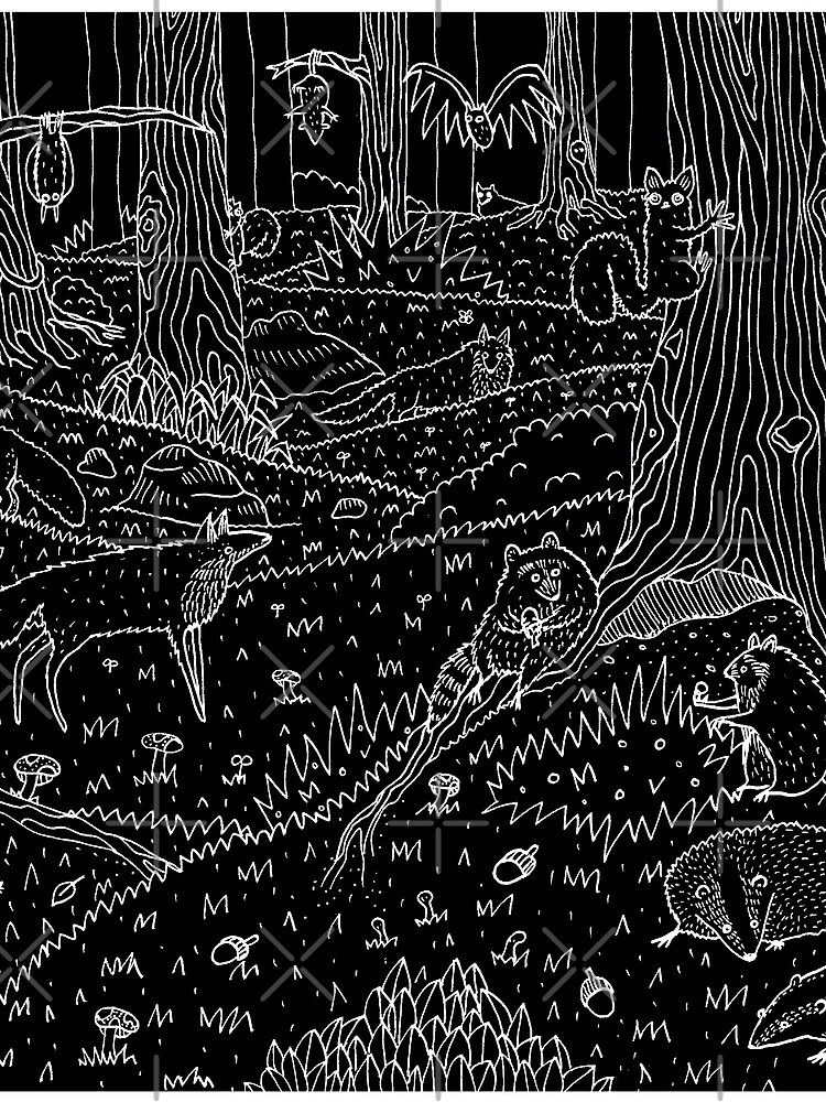 Nocturnal Animals of the Forest by SophieCorrigan