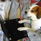Just Checking My E-Mail, Mommy! by debbiedoda