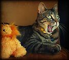 What???!!!!!!!! by jodi payne