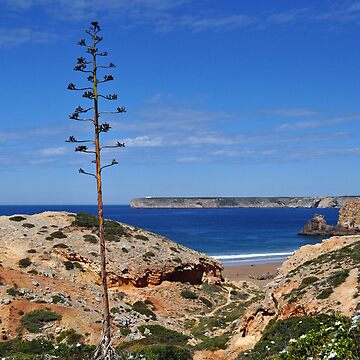 Sagres by metronomad