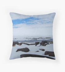 Antarctic Rubbish Throw Pillow