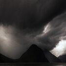 The Dark Side of Milford Sound by Michael Treloar