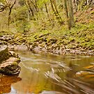 River Twiss by Stephen Knowles