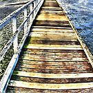 McLaughlins Beach Jetty by Jennifer Craker