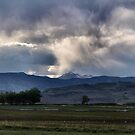 Will it rain? by Barb Miller