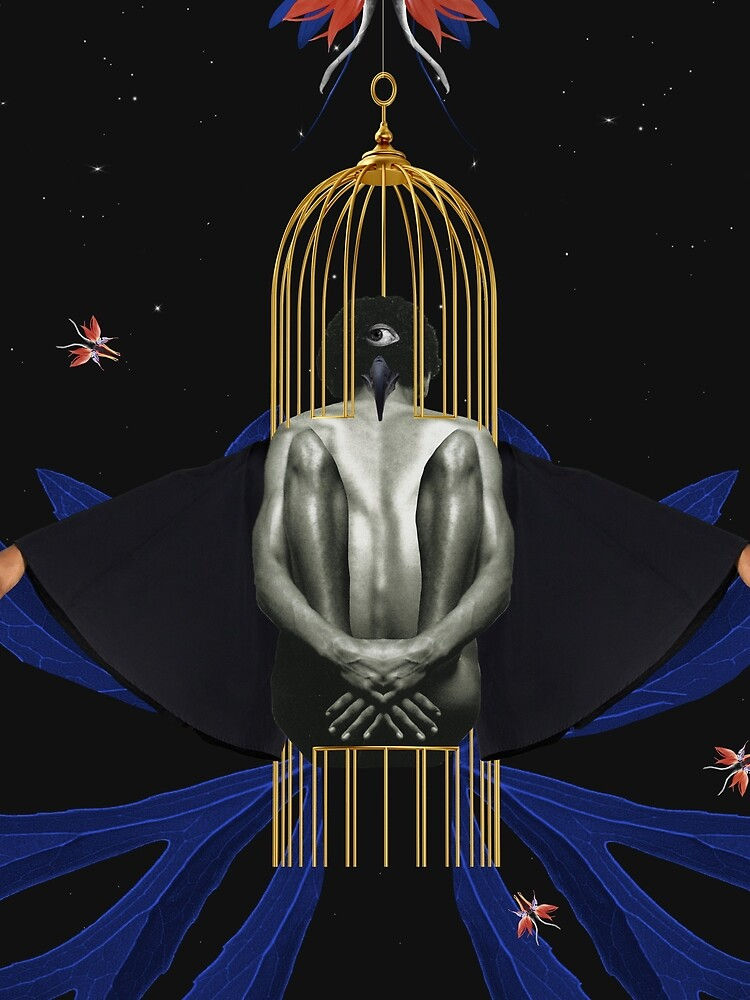 Blackbird - Freedom, Independence, Bird, Fly by ilariaantolini