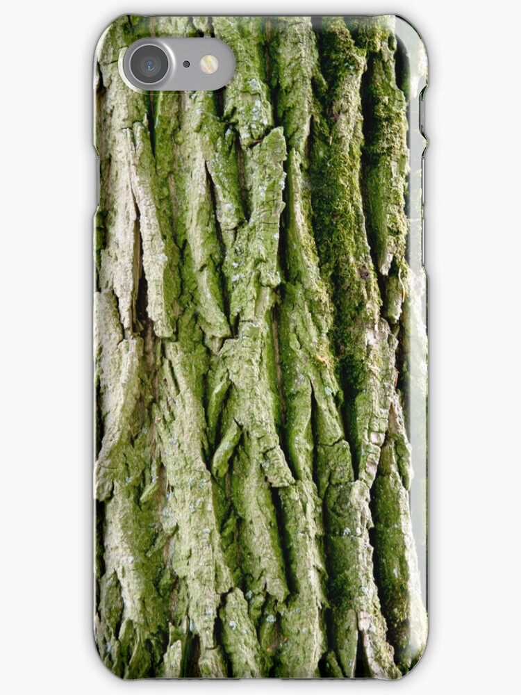 Tree Bark (Poplar Tree) by VanOostrum