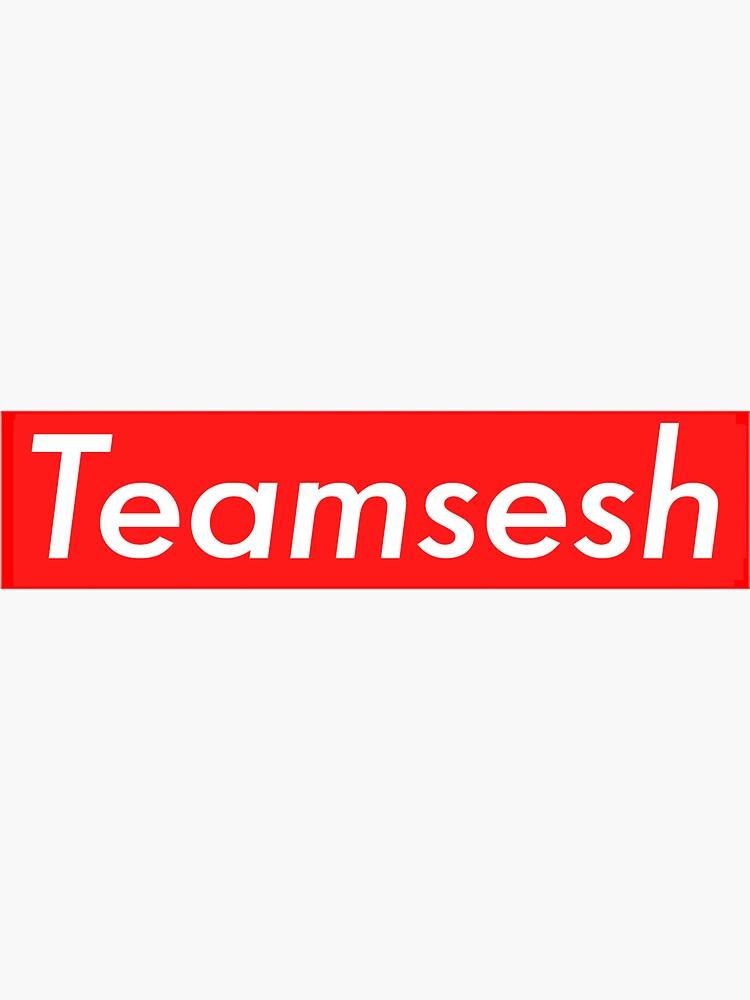 Bones Teamsesh SESH (Supreme) by feelngevaporatd