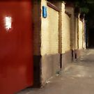 red gate by Nikolay Semyonov