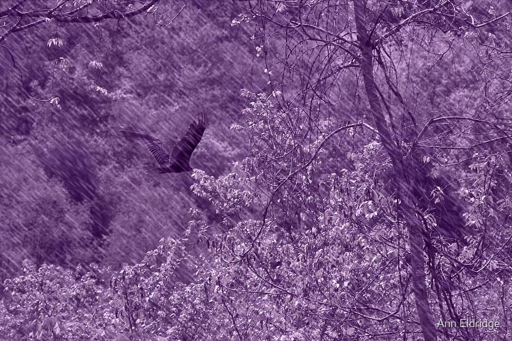Bye,Bye Blackbird by Ann Eldridge