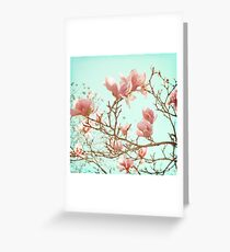 Japanese Magnolias Greeting Card