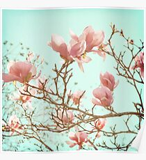 Japanese Magnolias Poster
