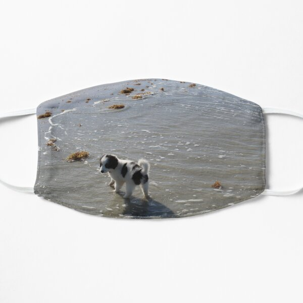 Australian Shepherd Puppy's First Day at the Beach Mask