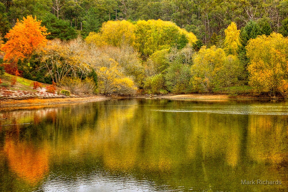 Autumn by the lake mt lofty botanic gardens adelaide for Adelaide hills landscape