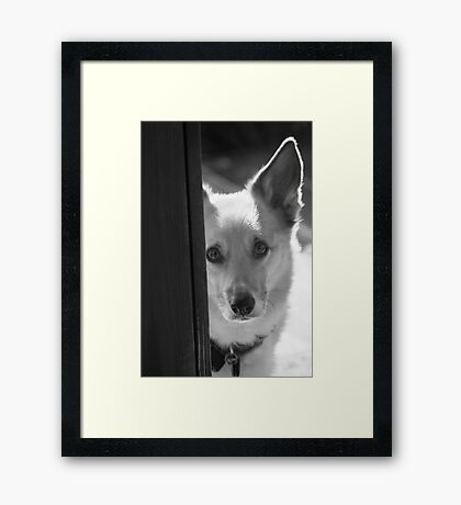 The Windows To His Soul ~ Framed Print