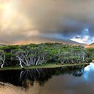 Tidal River and Mount Oberon  by Sharon McDowall