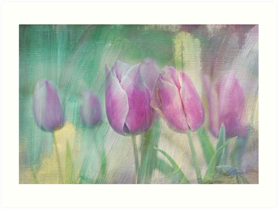 simply tulips by Teresa Pople