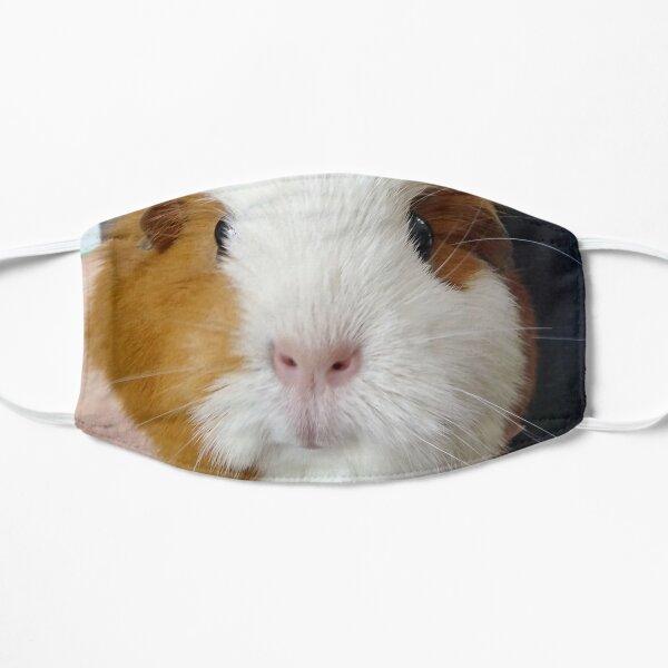 Guinea Pig Photograph Flat Mask