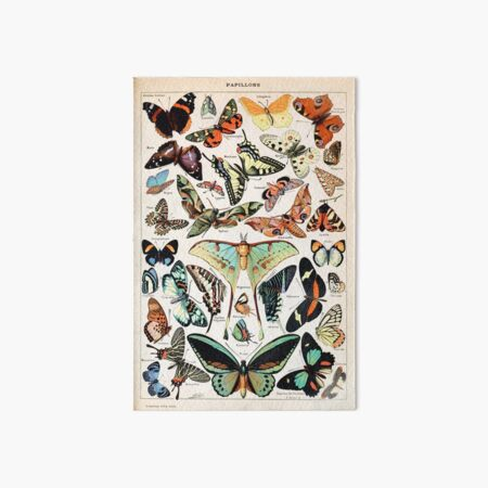 Adolphe Millot - Papillons pour tous - French vintage poster Art Board Print