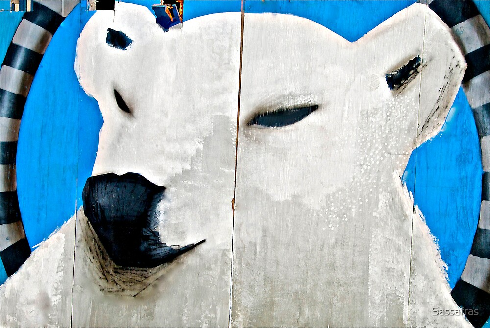 POLAR Conversation.......... (Coney Wall series  7 of 9) by Sassafras