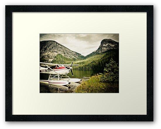 Alaska Fjords by Randy Turnbow