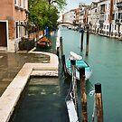 Venezia by Laura Cutmore