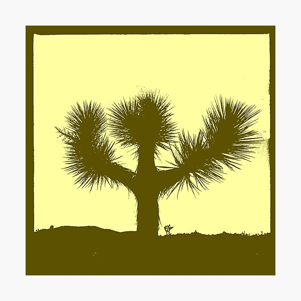 Joshua Tree (version 3) Photographic Print