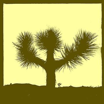 Joshua Tree (version 3) by pberggr1