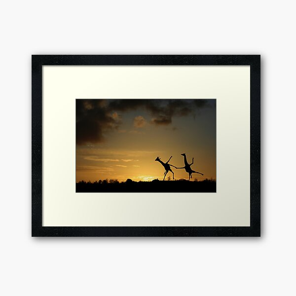 Happy Dancing Giraffes Framed Art Print