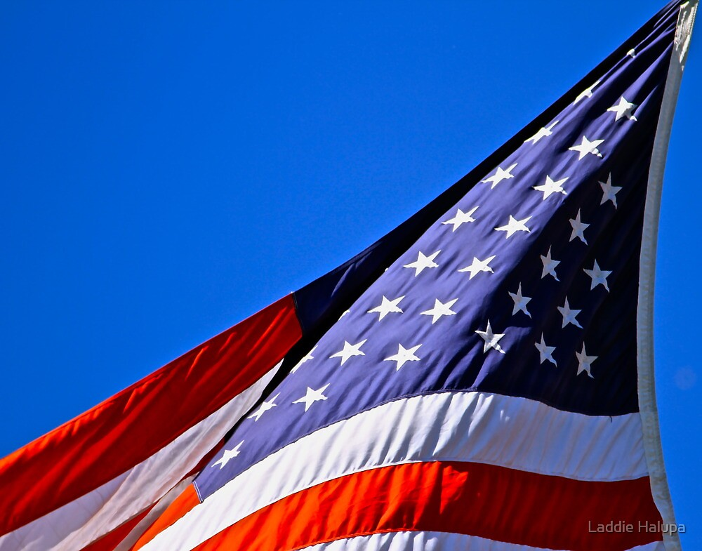 The Stars and Stripes on Spacious Skies by Laddie Halupa