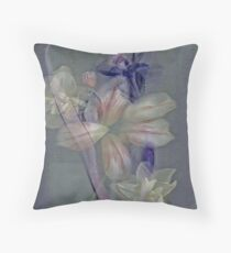 Just a memory... Throw Pillow