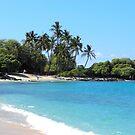 Kona State Beach, Big island Hawaii by Joni  Rae