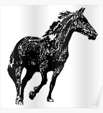 dapple grey horse  Poster