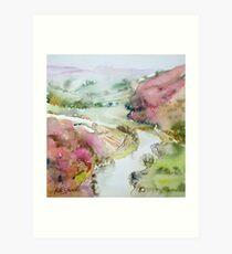 Birds Wye View Art Print