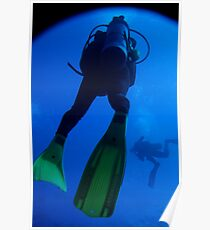 Two scuba divers swimming Poster