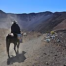 Man riding horse in the Haleakala crater by Sami Sarkis
