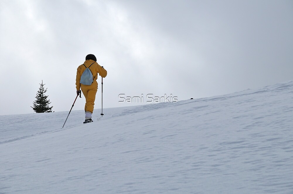 Woman snowshoeing, French Alps, France by Sami Sarkis