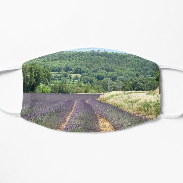 France: Lavender Fields Mask