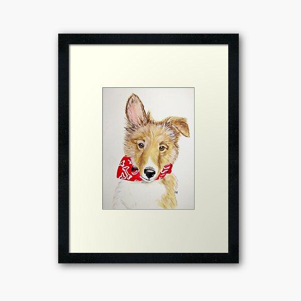 Tuck, Shetland Sheepdog Puppy Framed Art Print