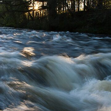 River Dart by thorney102