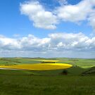 South Downs Panorama by mikebov