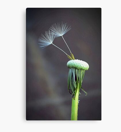 Not Without You... Canvas Print