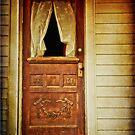 No one is Home by Debra Fedchin