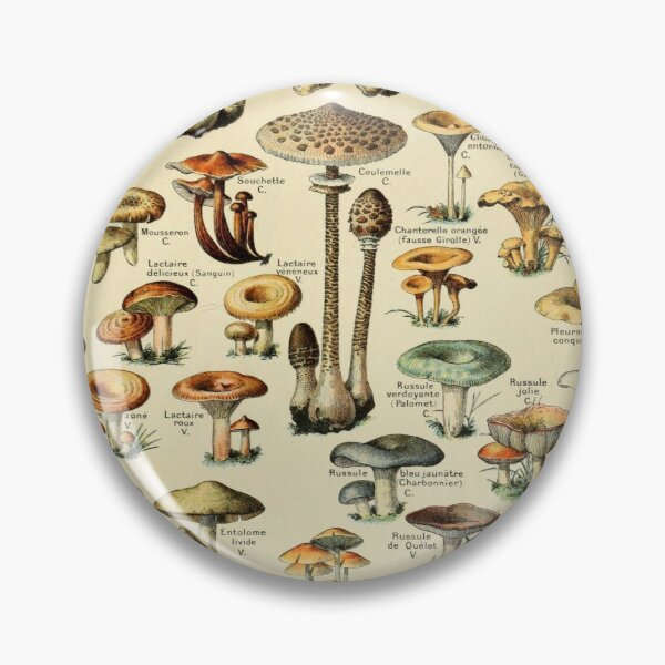 Magical Mushrooms Pin