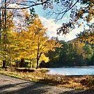 Ghost Lake, Shades of Death Rd, Warren County, NJ - Original photo by Jane Neill-Hancock