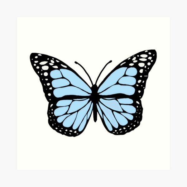 cornflower blue butterfly Art Print