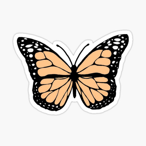 creamsicle orange butterfly Sticker