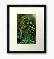 Emerald Scales Framed Print