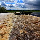 May Spate, River Tees, Broken Scar Weir, North England by Ian Alex Blease