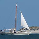 Sailing by Caren
